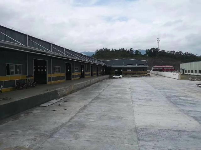 龙岗新出独院钢构厂房8900平高度9米低价出租-图6