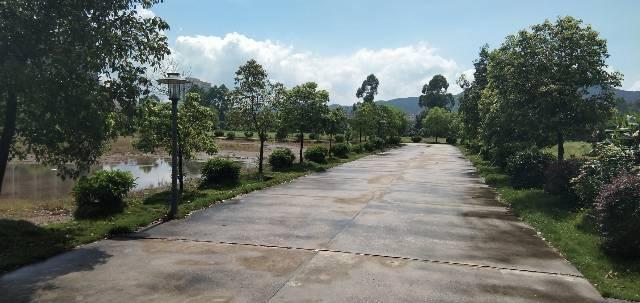 惠州市惠阳三和经济开发区原房东红本标准厂房3万平方可办理环评-图5