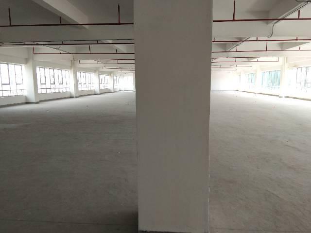 惠州市惠阳三和经济开发区原房东红本标准厂房3万平方可办理环评-图9