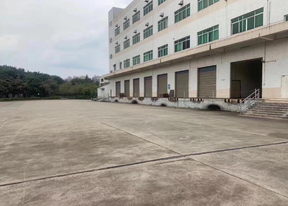 塘厦大坪园区标准一楼仓库出租1200平带卸货台可进13米挂车