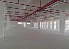 高新园区独栋1-4层9600平招租带红本