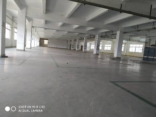 现成电子环评,可喷漆,独门独院标准厂房6000平方,空地很大-图4