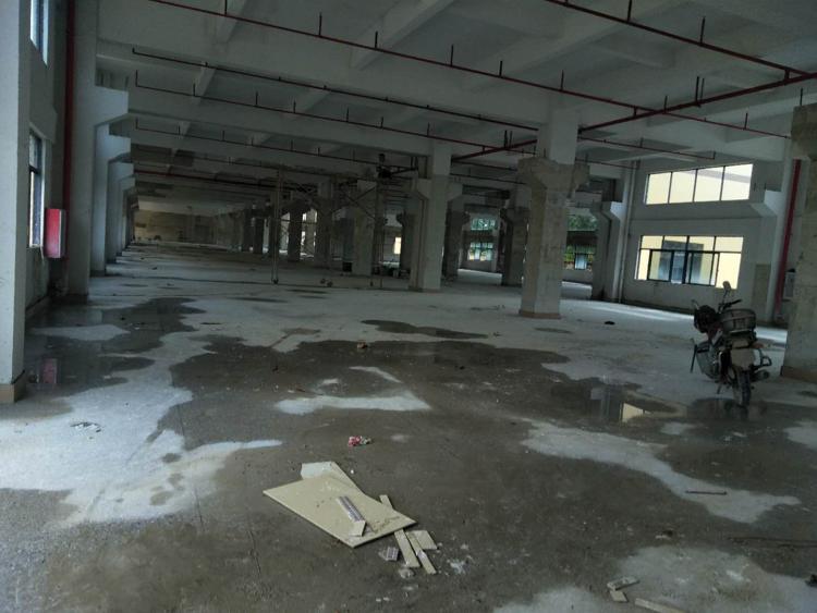 博罗一楼标准厂房5000独院招租需要的老板快看过来