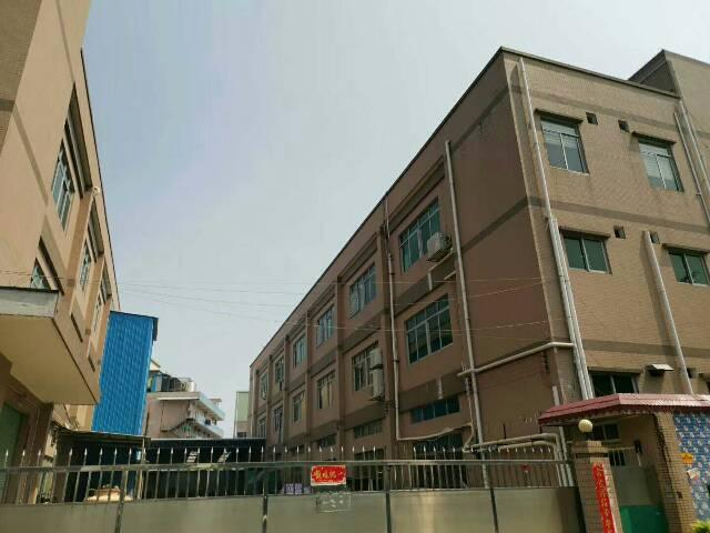 东莞市生态园区域九成新小型独院厂房急售