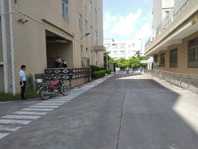 惠环镇高速路口旁花园式红本独院19000平