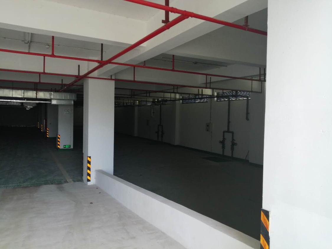 黄埔东区20000平花园欧式厂房招租可分租-图6