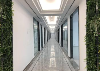 宝安中心区全新写字楼出售 225m² 户型方正图片2