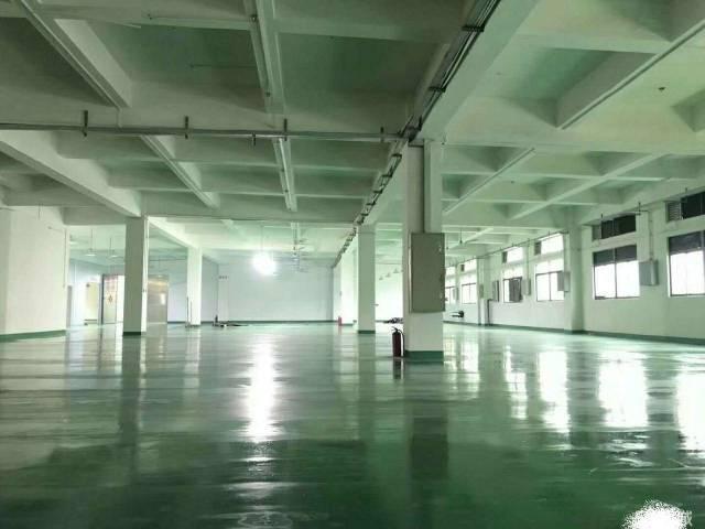 樟木头成熟工业区内3300平标准二楼厂房,可分租