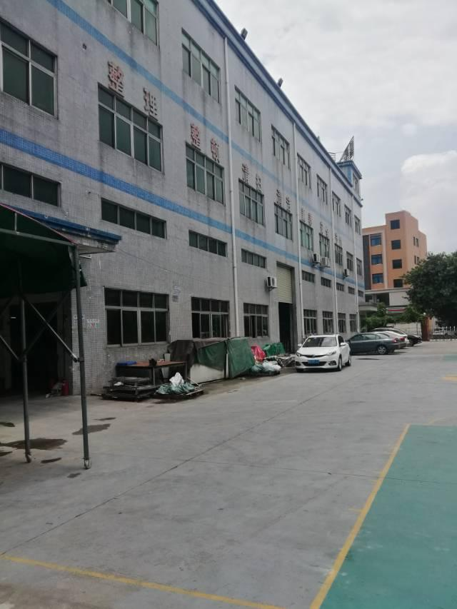 塘厦镇新装修厂房一栋招租适用于小型加工厂贸易仓库电商交通方便