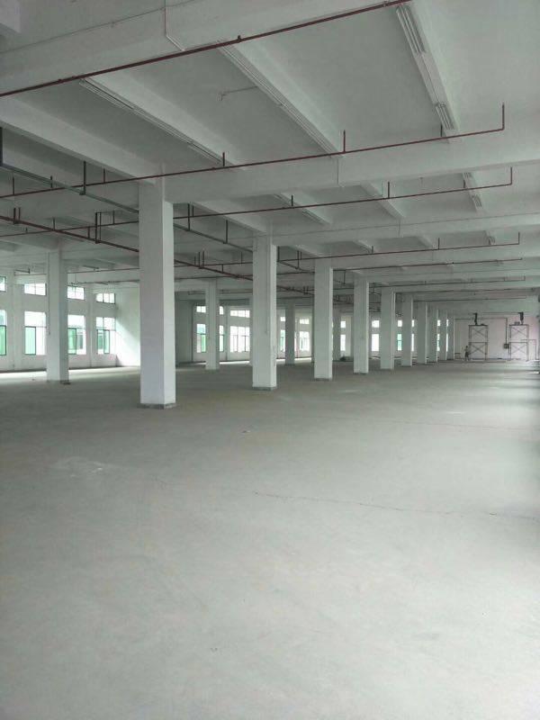 大型工业区独栋厂房3层5400平方,证件齐全,工业氛围浓厚-图2