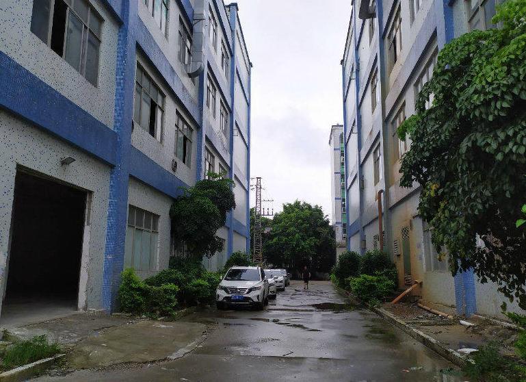 塘厦光辉建材市场附近6米高480平标准一楼出租适合仓库小加工