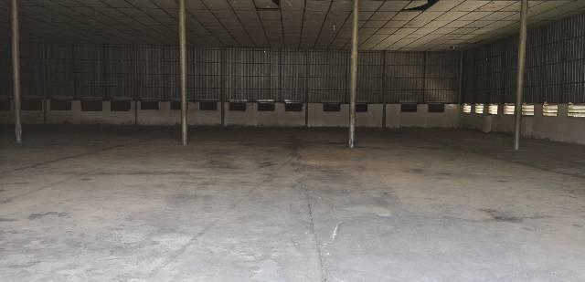万江原房东钢构厂房,1000方,适合做仓库,交通方便