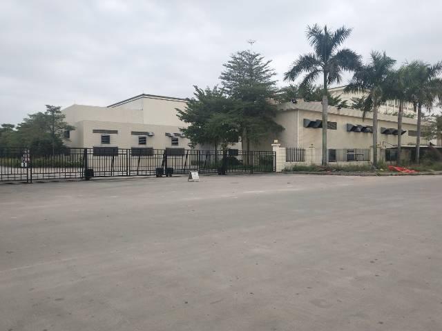 惠阳区平潭镇独院钢构13000平米厂房出租,高度9米
