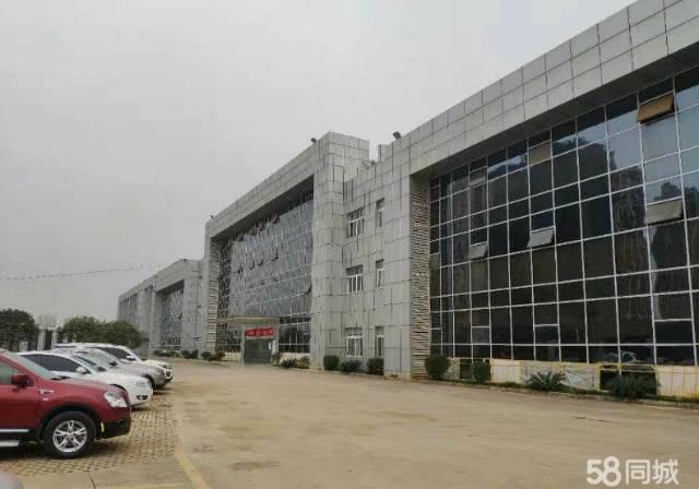 龙泉经开区4000平米厂房出租-图2