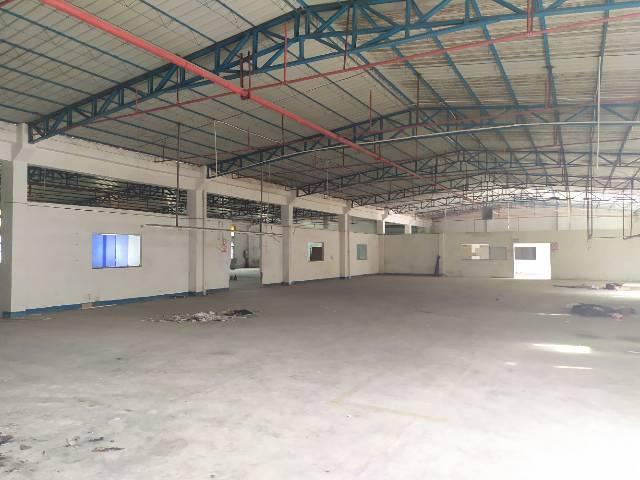 惠州惠阳秋长独门独院钢构厂房1600平出租可办理环评-图5