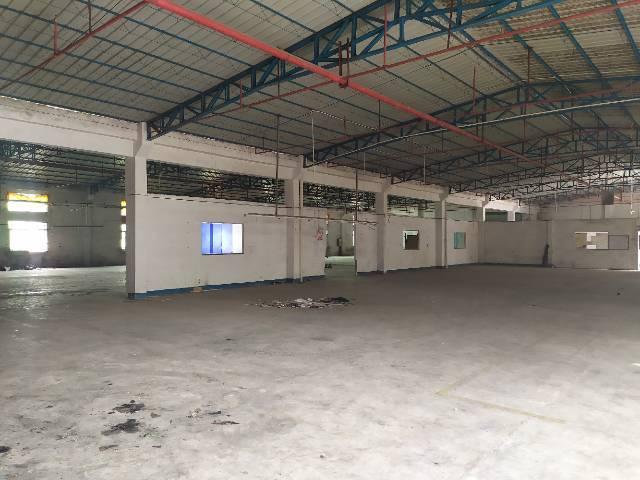 惠州惠阳秋长独门独院钢构厂房1600平出租可办理环评