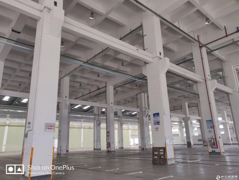 厚街镇宝塘村新出钢构2800平8米高厂房仓库空地大可分租