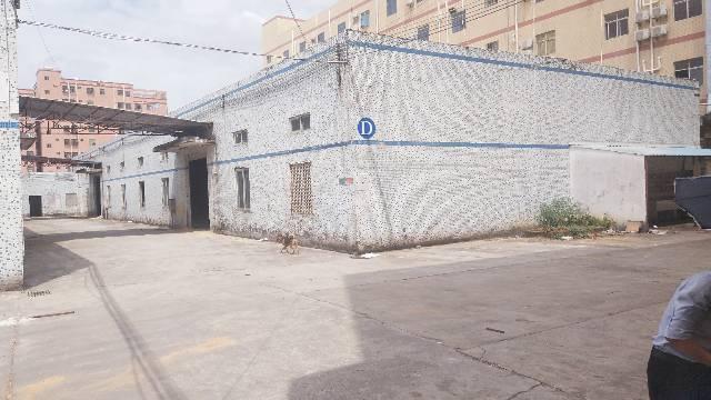 秋长新塘原房东钢结构厂房招租850平米无公摊