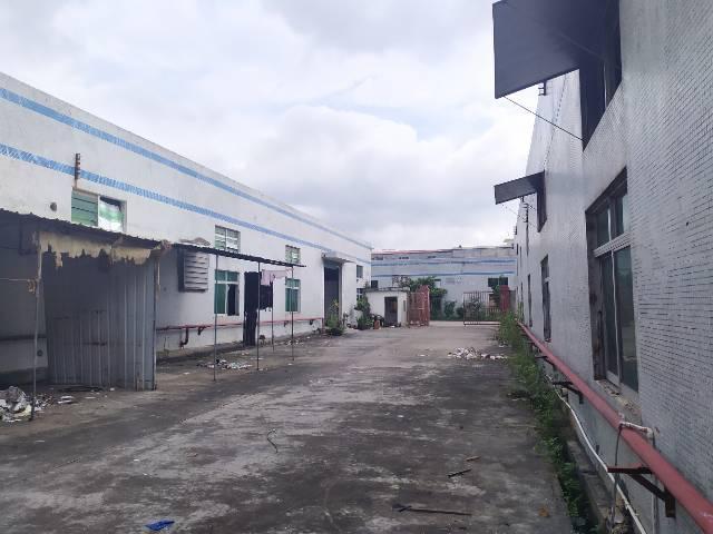 惠州惠阳秋长独门独院钢构厂房1600平出租可办理环评-图2