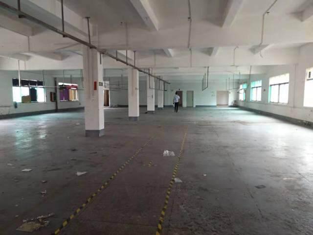 輔城坳工业区独门独院厂房3楼1300平方出租图片3