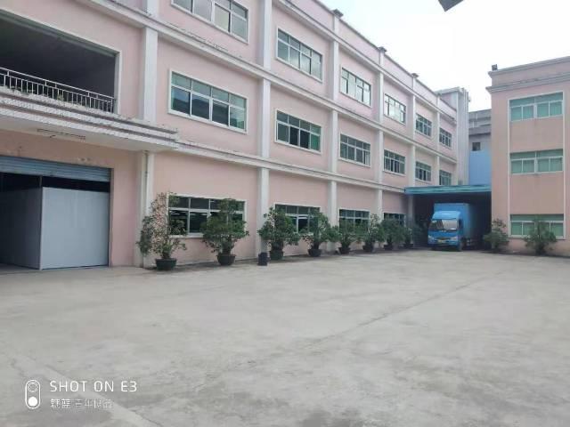樟木头镇石新厂房1楼1300平方实际面积,高度4.5米