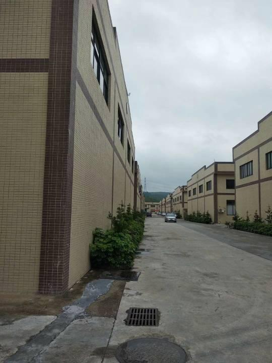 惠东白花高速路口3公里工业园单一层厂出租