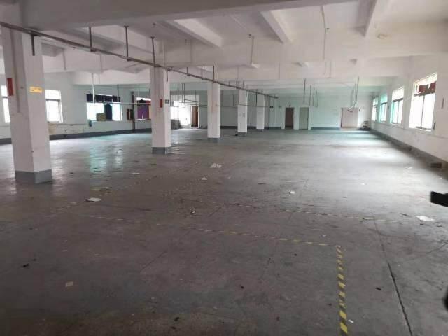 輔城坳工业区独门独院厂房3楼1300平方出租图片4