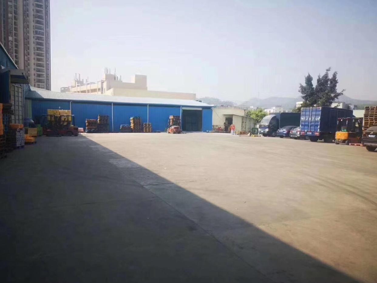 龙华钢结构1800平物流配送仓库出租高度8米