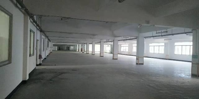 樟木头原房东独栋厂房对外招租