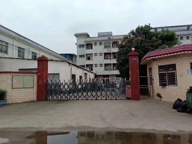 虎门镇沿江高速路口独门独院厂房3500平方,低价出租