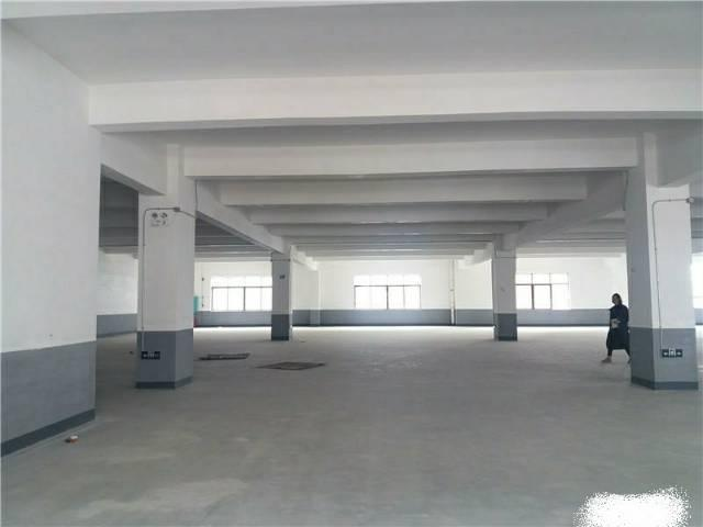 樟木头全新厂房二楼1100平,300平起分租,有两台货梯