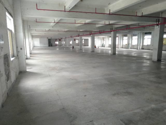 樟木头镇樟罗管理区有标准厂房一楼出租