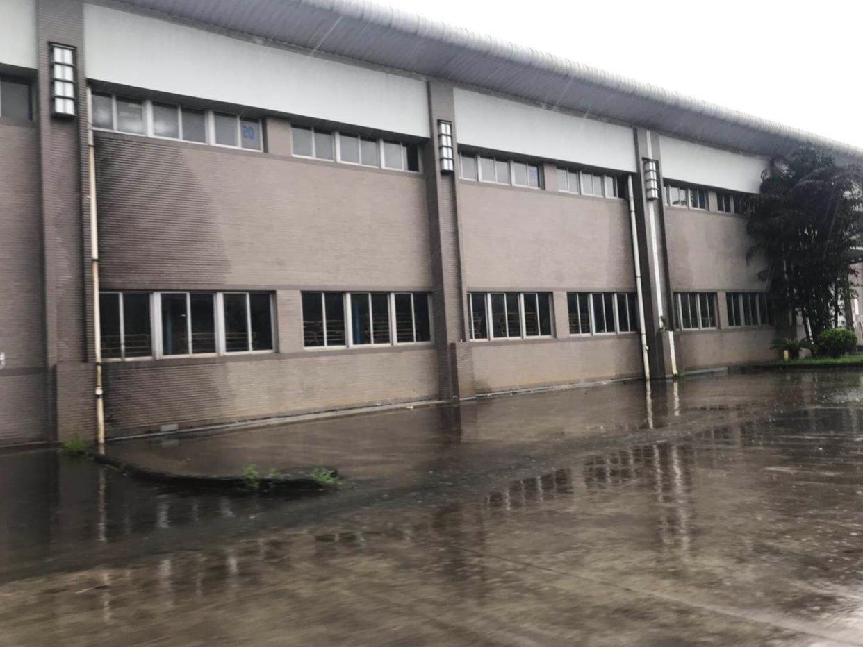 大岭山新出独院20000平,高度10米,适合物流仓库!