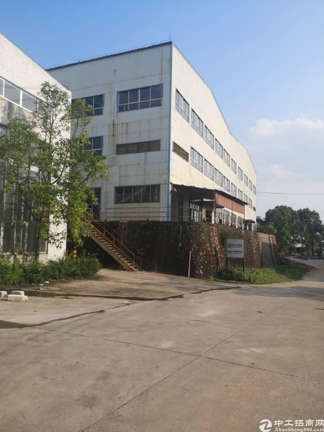 白云区均禾街道厂房仓库招租1250个平方大小可分租