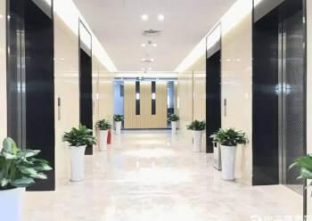 龙华民治海韵大厦 163m² 中高区 精装图片3