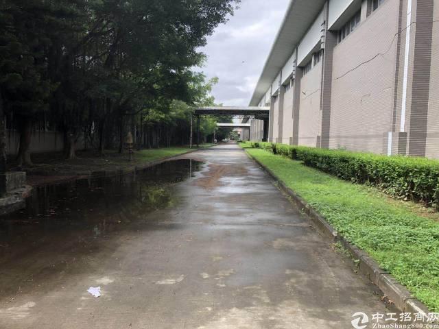 大岭山镇原房单一层厂房仓库实业面积约110000平可分租