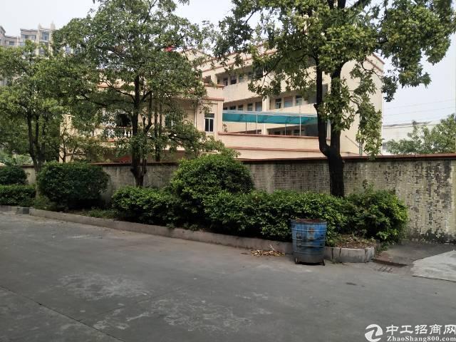 沙田杨公洲新出独院一至二楼2000平方标准厂房