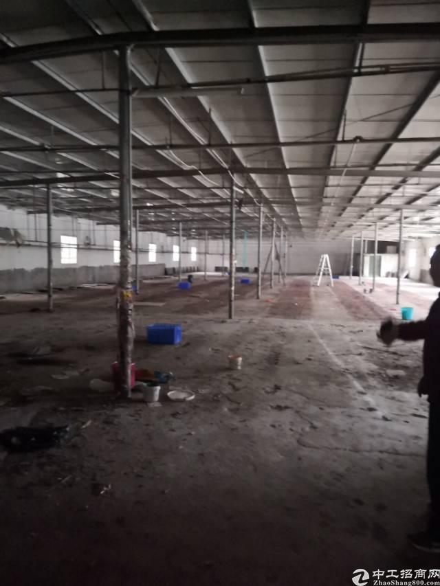 仁和国道旁钢结构仓库分租