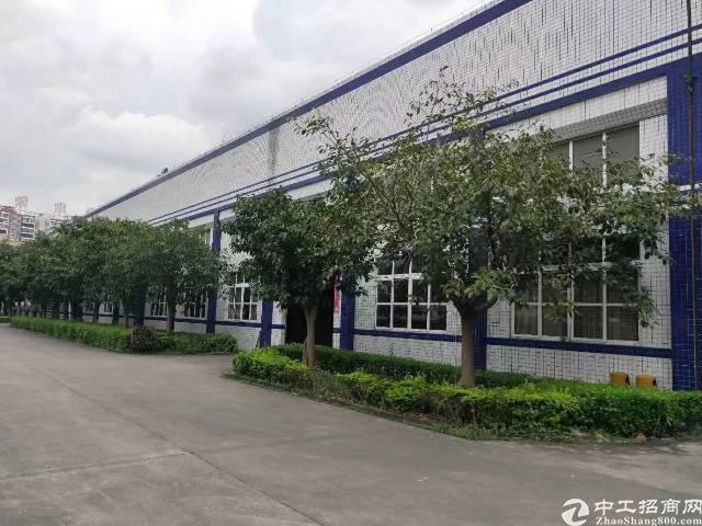 惠阳工业区10米钢构厂房出租-图2