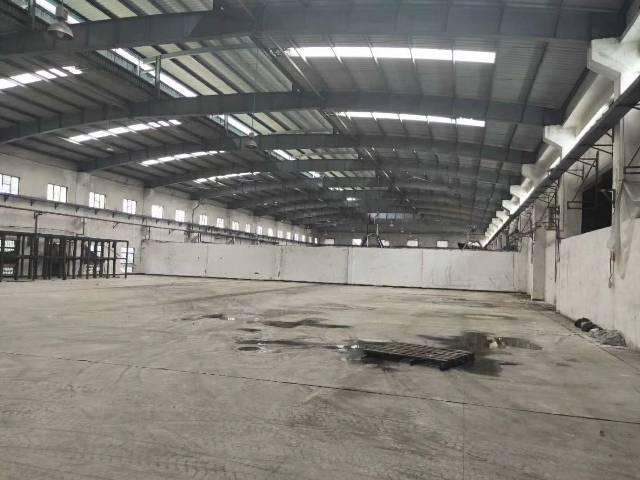 惠阳工业区10米钢构厂房出租-图3