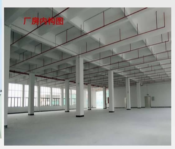 水口新出双证齐全标准厂房60000平米舍10000平米-图5