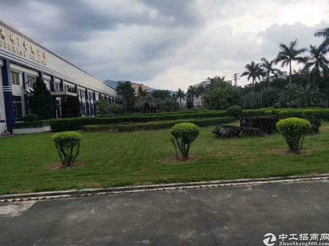 惠阳工业区10米钢构厂房出租