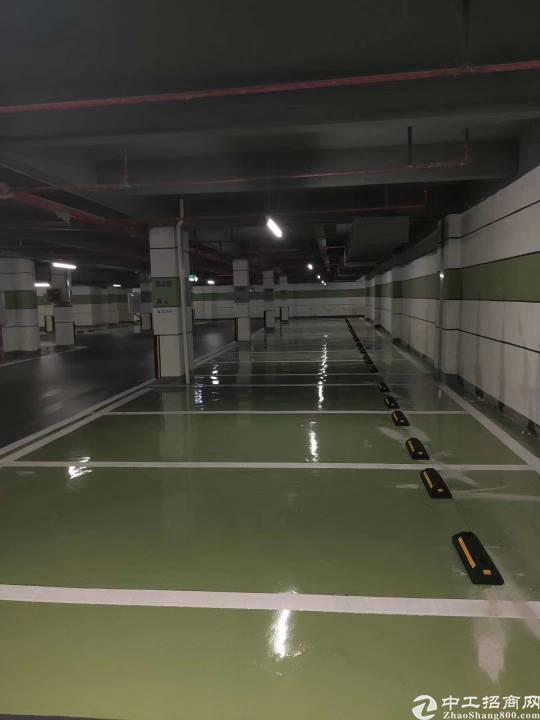 塘厦负一楼仓库2000平方仓库招租,电梯直上带喷淋