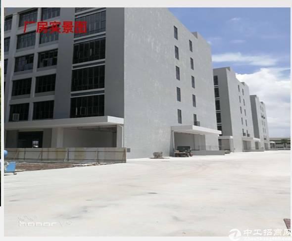 水口新出双证齐全标准厂房60000平米舍10000平米-图3