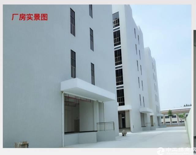 水口新出双证齐全标准厂房60000平米舍10000平米-图8