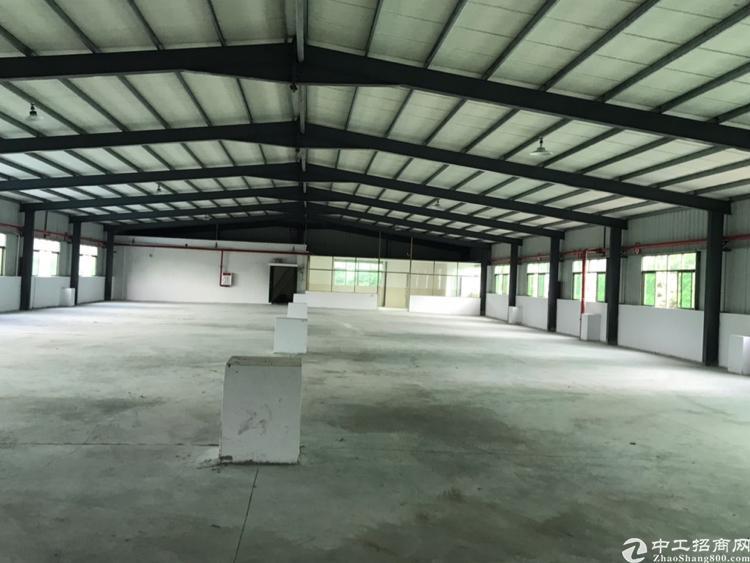 塘厦成熟工业园区1000平方米仓库厂房零公摊只租18元