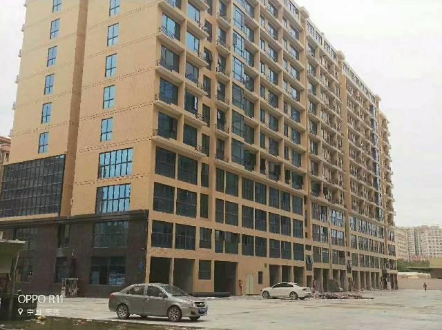 东莞长安新出原房东12万平方大小可分厂房出租