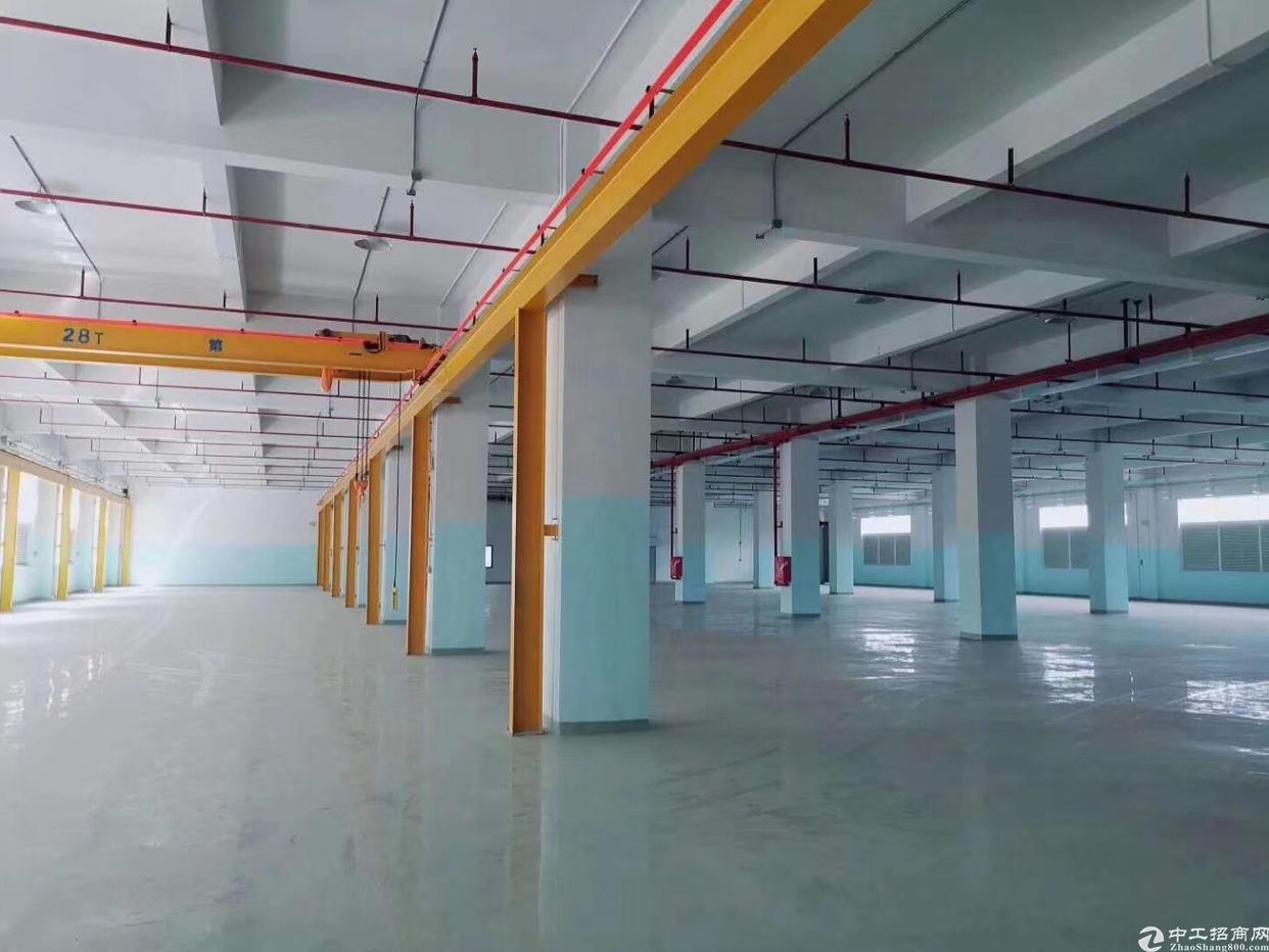 凤岗紧邻深圳标准一二楼各3960带现成行车有喷淋水电齐全