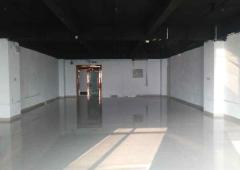 宝安桃花源科技创新园旭生分园 214m² 高区 精装