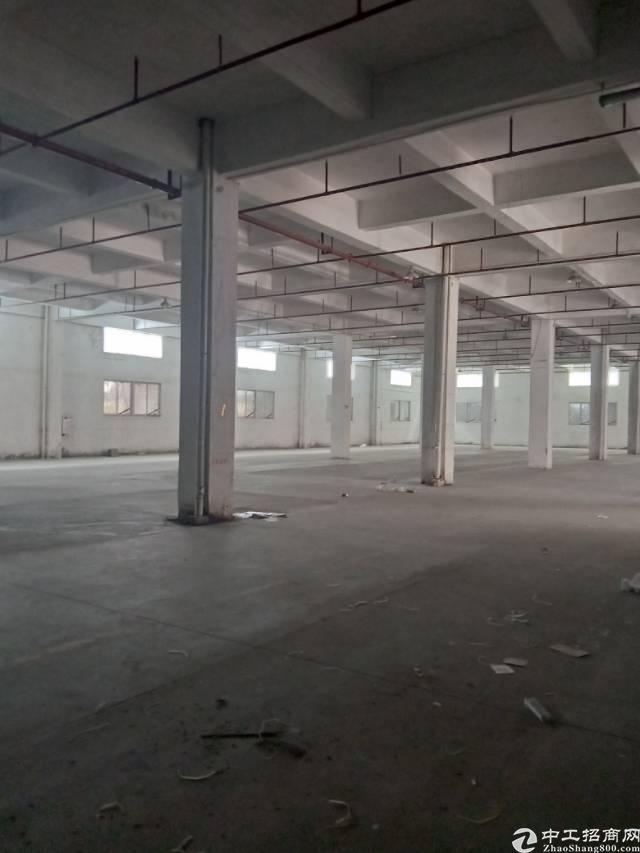 实业客分租标准厂房一楼一千五平